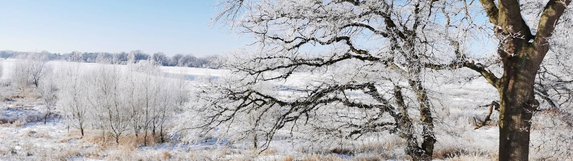 weiße pracht so weit das auge reicht ©Hansestadt Havelberg
